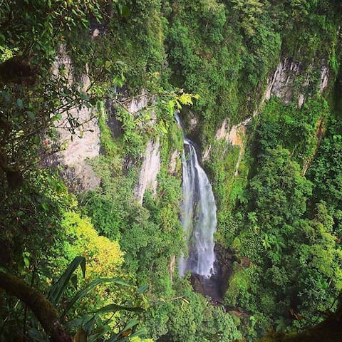 Reserva Natural Macizo de Peñas Blancas