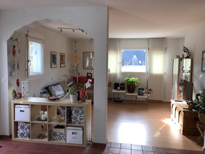 bright apartement close to Basel