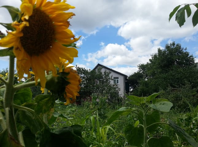 Small room in garden community near Kyiv