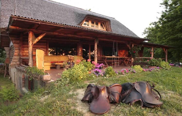 Eco-economy - Room 4 - CHERRY - Općina Osijek