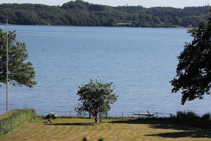 Vejle Fjord panoramic view and forest tranquillity