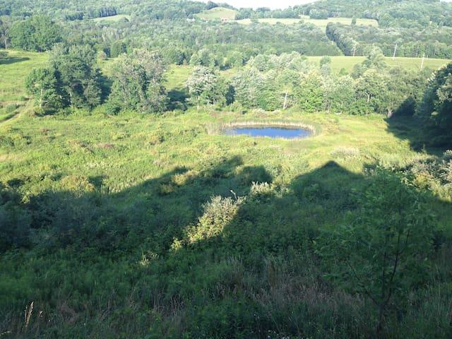 Majestic Farmland A-Frame - Callicoon - Dom