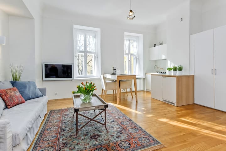 Best located Beautiful Apartment in Old Town