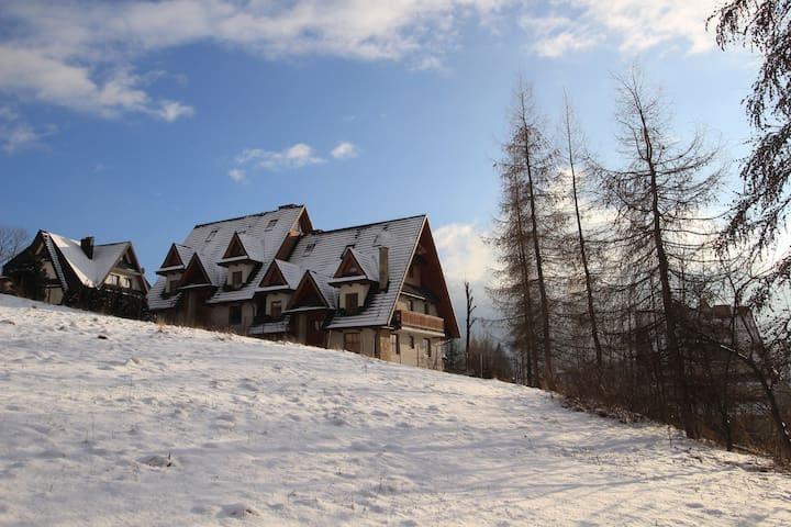 Very spacious apartment in quiet part of town - Zakopane - Appartement