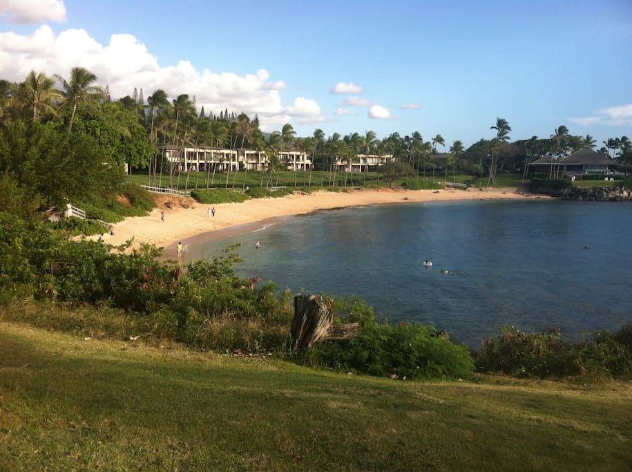 This super Kapalua bay beach is within 5 minutes walk from our condo two other beaches are nearby