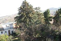 Il merviglioso parco davanti casa visto dal balcone della camera da letto padronale