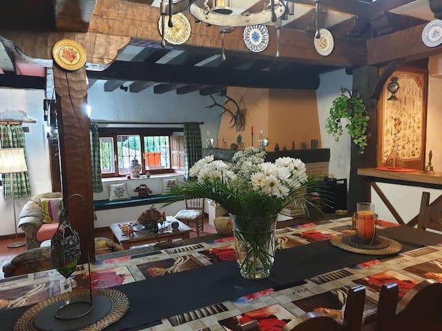 Zonas de salon comedor