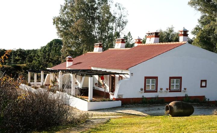 Monte do Areeiro em exclusividade-3 casas de Campo