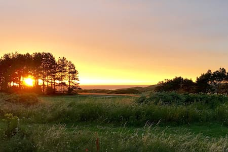The Yellow Ladybug — Amazing View - Wimereux