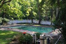 Pool is shared with guests at my other AirBnB mansion.