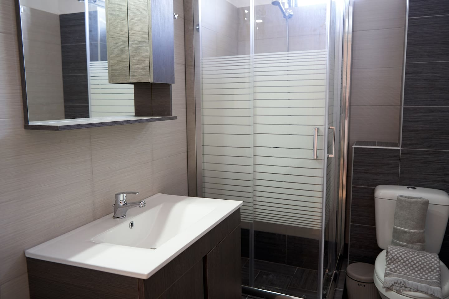 Brand new and comfortable bathroom with shower, sink, toilet and boiler for hot water
