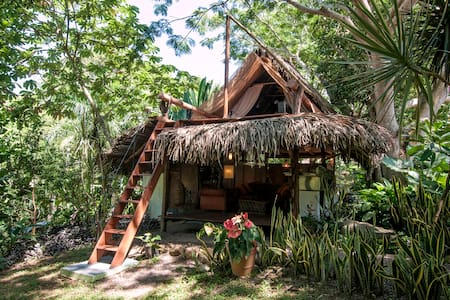 Tree House in the Jungle - Sayulita - Hus i træerne