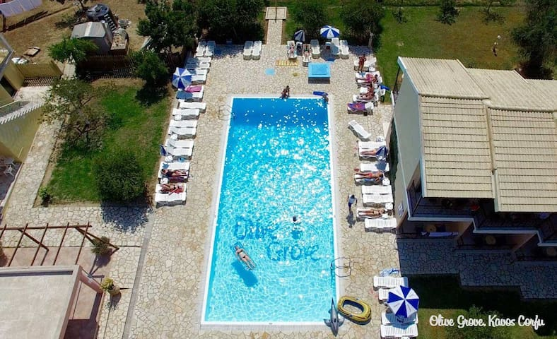 Olive Grove Resort3 - Kavos - Apartment