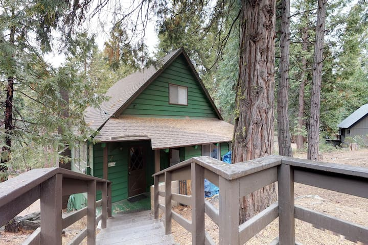 Cute, dog-friendly cabin in tranquil wooded setting, your own private snow park!