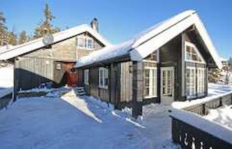 Lifjell - hytte, rett ved løypene i Solskinndalen.