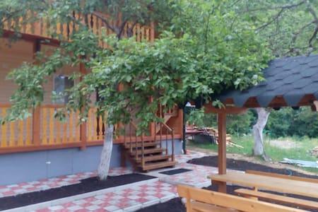 Уютная студия 2 - Sheshory - Appartement