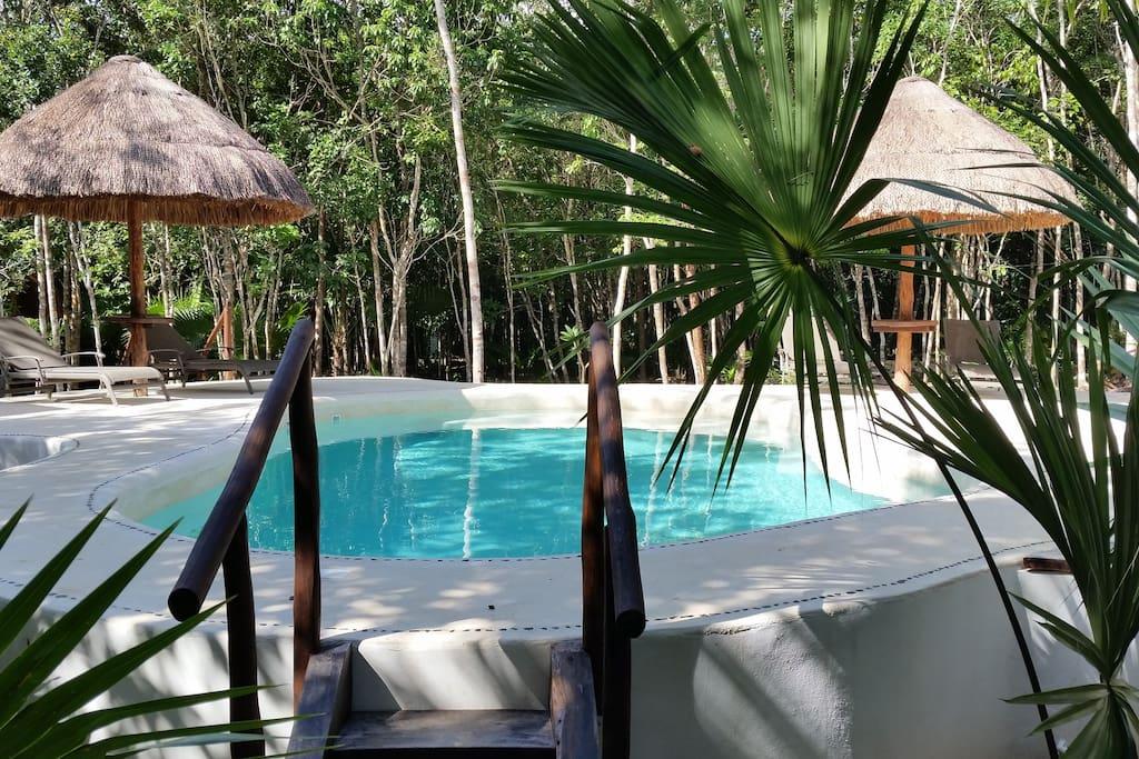 Pool - Piscine - Alberca