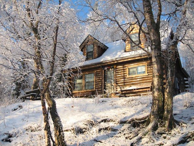 Original Homestead Cabin-Lake View - Wasilla - Cabaña