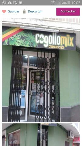 Cogollo mix
