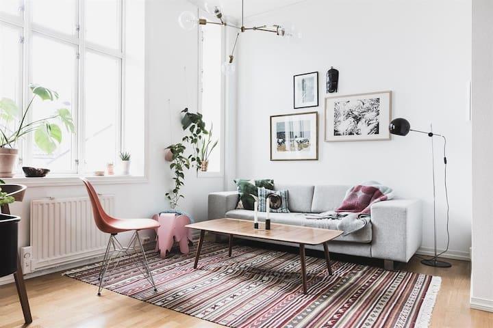 Delited, and fresh apartment in Warsaw - Warszawa - Apartmen