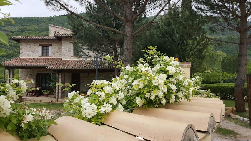 """Casale con piscina e idromassaggio:""""Casa Lavanda"""""""