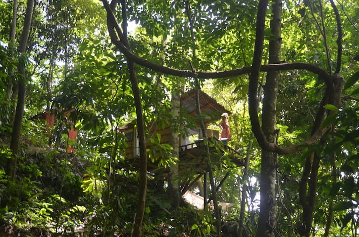 The Monkey Nest river treehouse for two