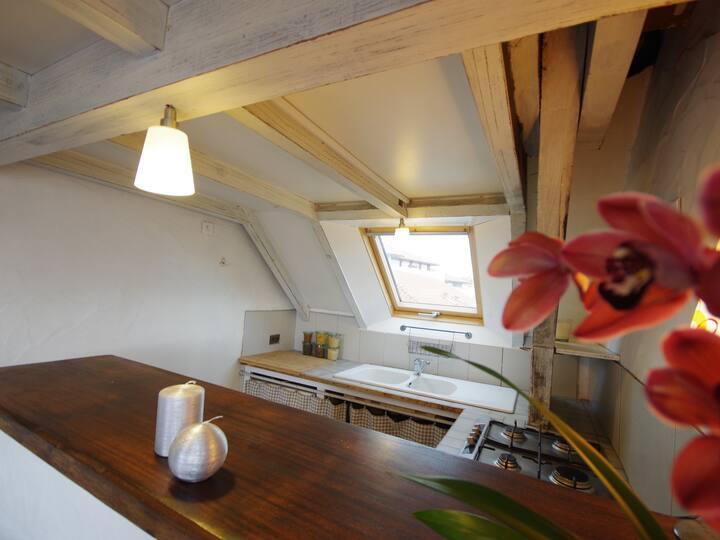 Agréable appartement -sous les toits-