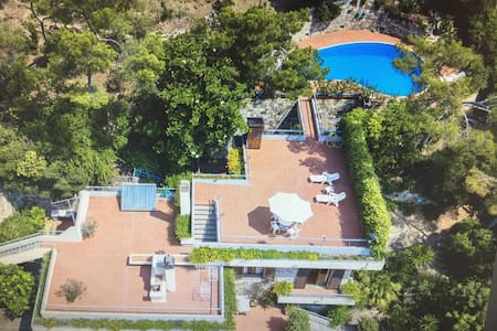 Magnificent villa with pool, in the pine grove