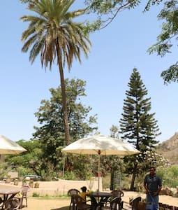 Forest Eco Lodge - Mount Abu