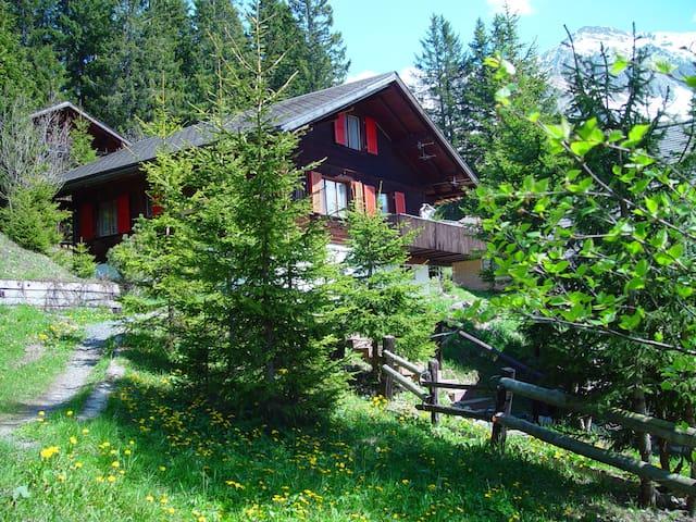Ferienwohnung Skiferien / Wandern  / Metsch - Frutigen - Huis