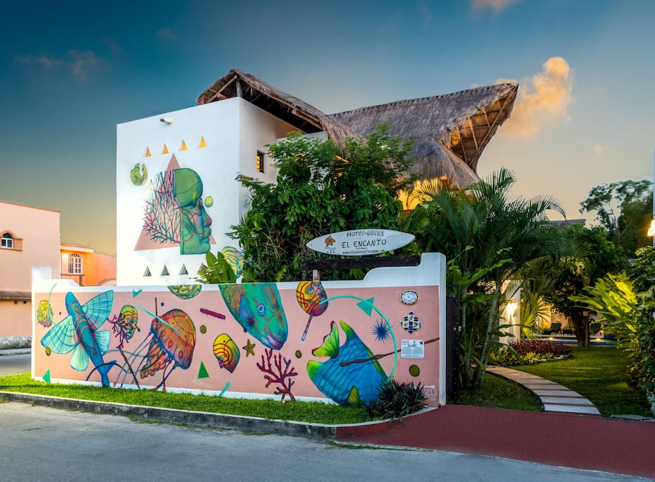 Cozumel Apartments For Rent
