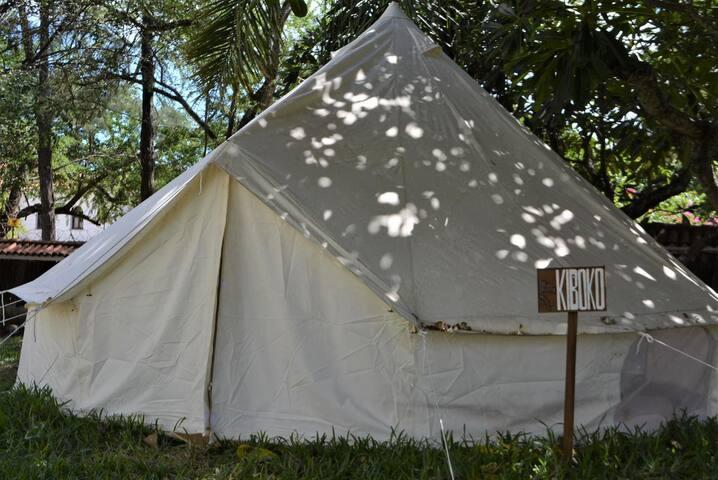 Tulia Backpackers; Tent