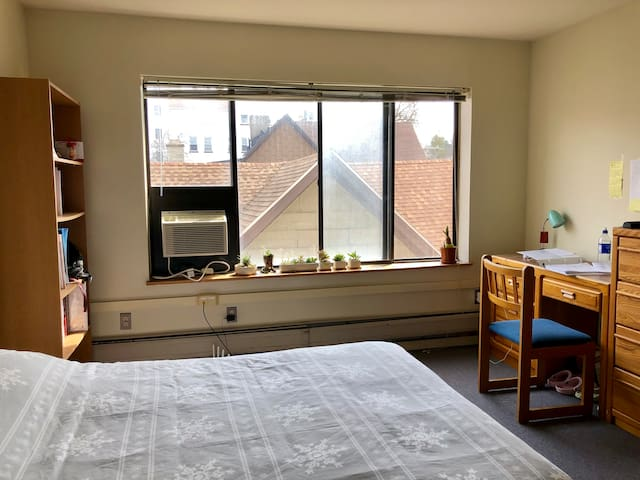 Studio/3mins Walk from Cornell Campus