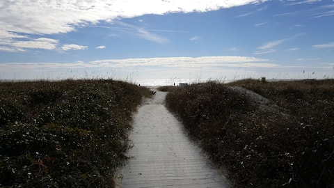 Walk to the Beach and the Tiki Hut