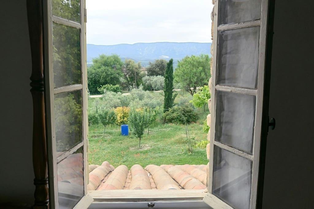 le jardin et au loin le Luberon