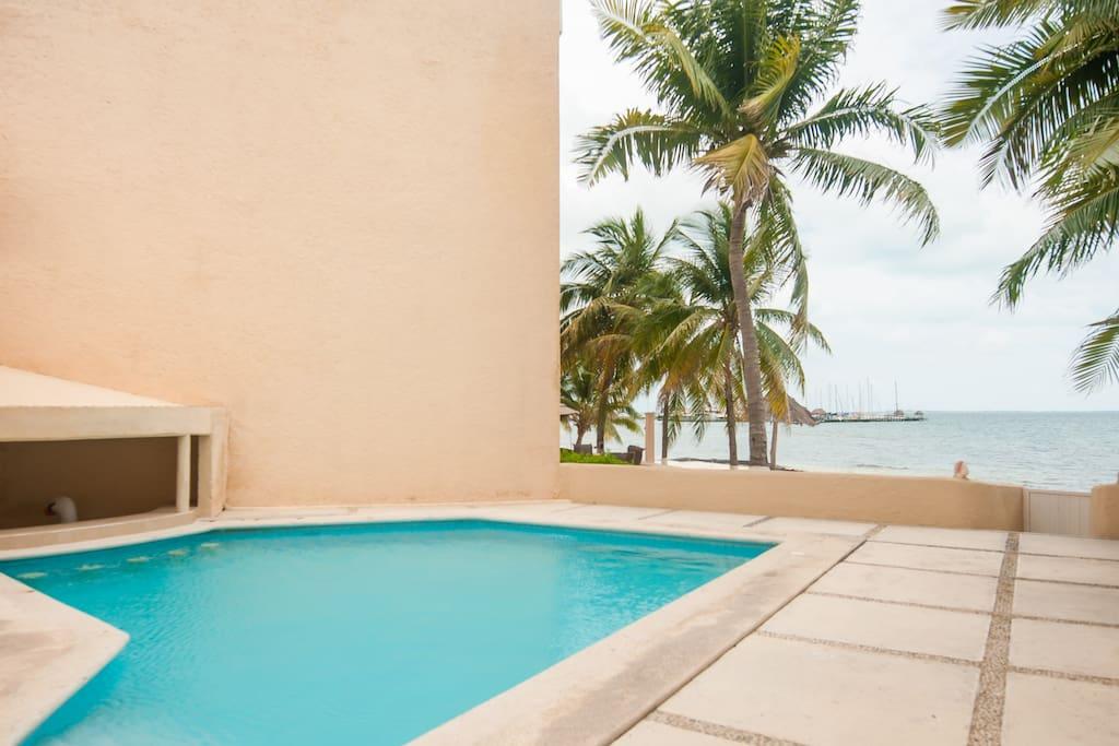 Ocean view pool.