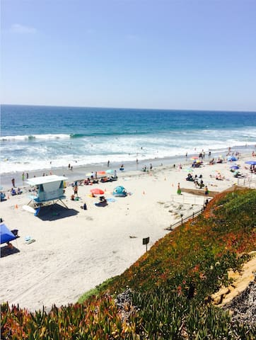 Loaded Flat Steps to the Beach, Train & Belly Up! - Solana Beach - Apartment
