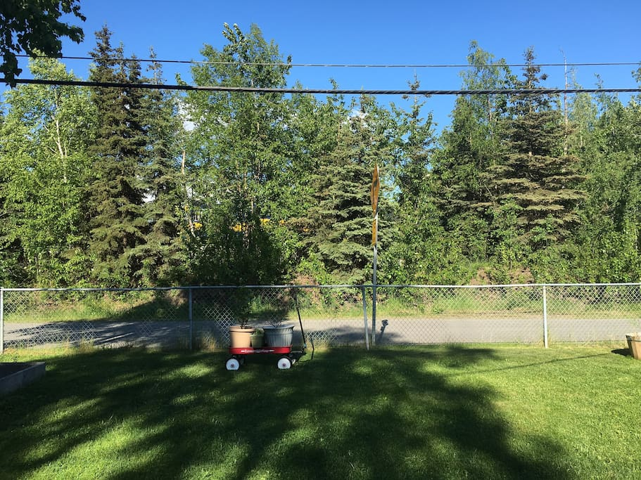 Hang out in the yard and watch the train go by (yellow engine just through trees)