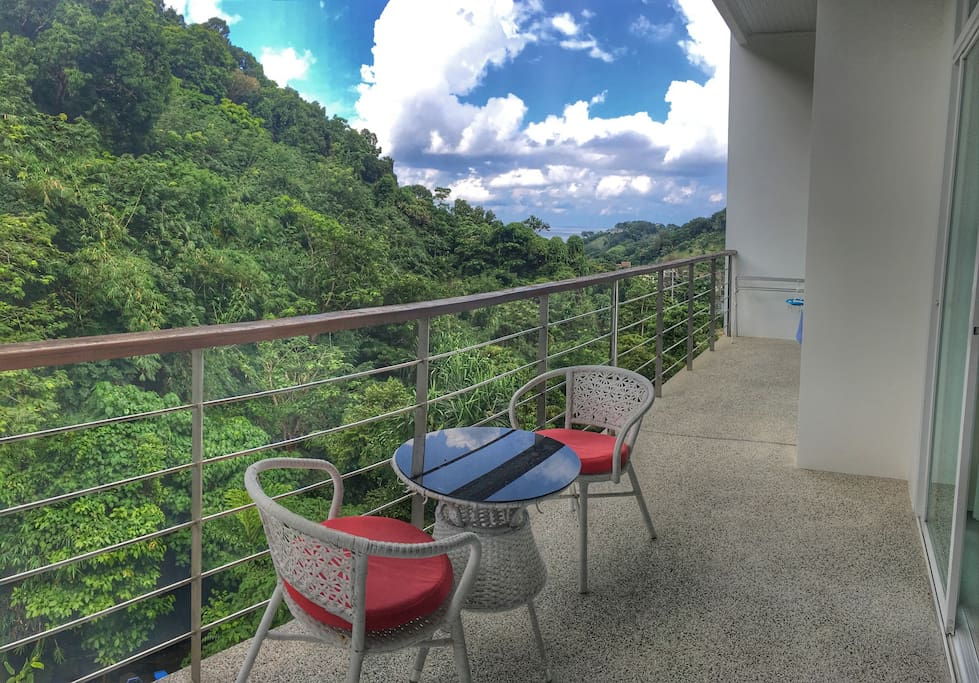 Panorama view of Rainforest and Sea