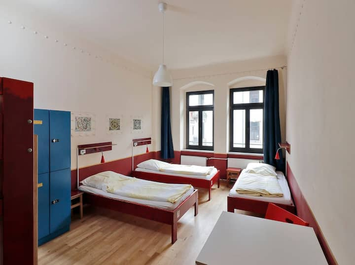 bed in mixed 5-bed dormitory