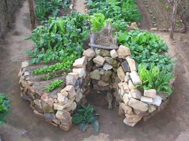 NEWOrganic gardening course build a keyhole garden