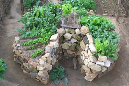 NEWOrganic gardening course build a keyhole garden - Órgiva