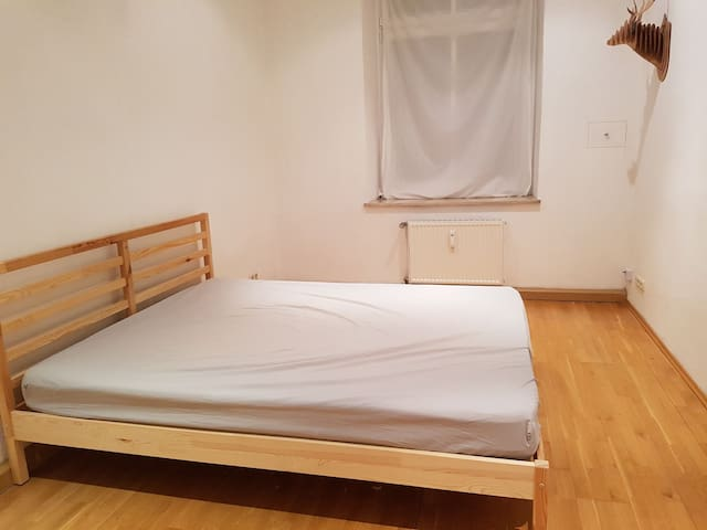 Nice Room in an Appartment with great location.