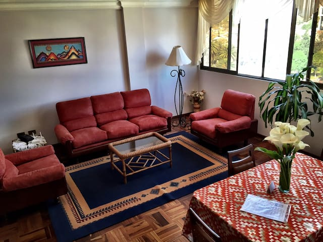 Sunny 2 BR Apt in Cochabamba - Cochabamba - Apartemen