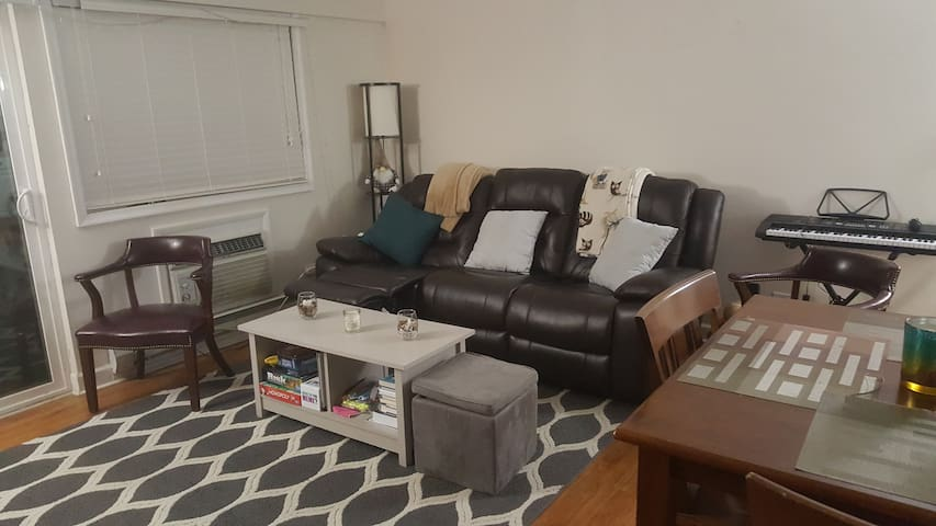 Spacious Private 1 BD Condo Near UVA and Downtown