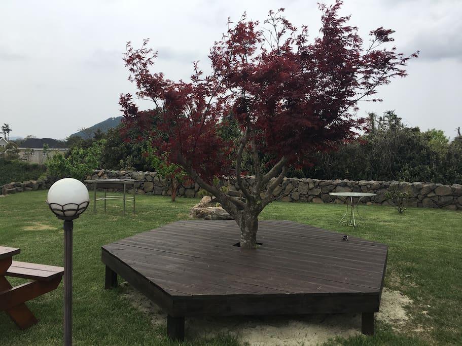 빨간 나무 아래 평상에서 낮잠자기