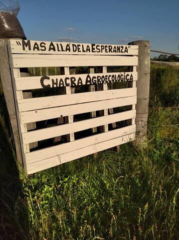 Más Allá de la Esperanza. Naturaleza Pura y Única.