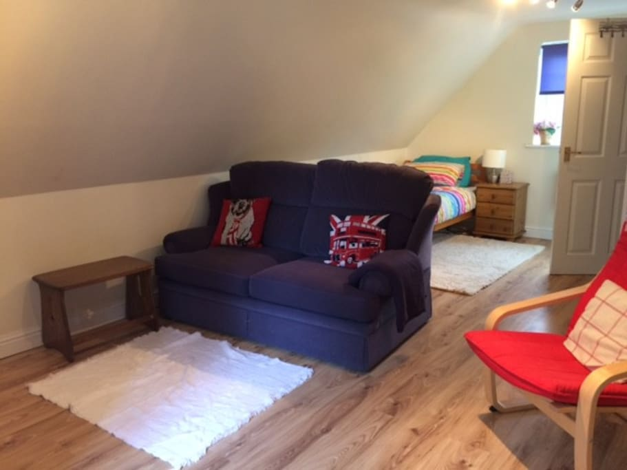 Compact space, with small double sofa bed, tv area, leading to single bed and bathroom.