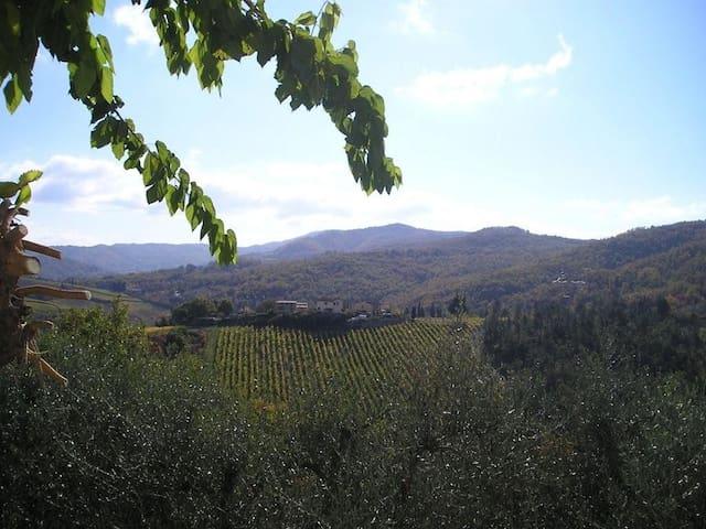 Un piccolo Paradiso nel Chianti più selvaggio