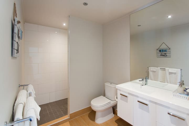 Good size bathroom with vanity, toilet and large shower area. Hair dryer in top draw.